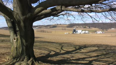 Lancaster-Counry-tree-and-farms