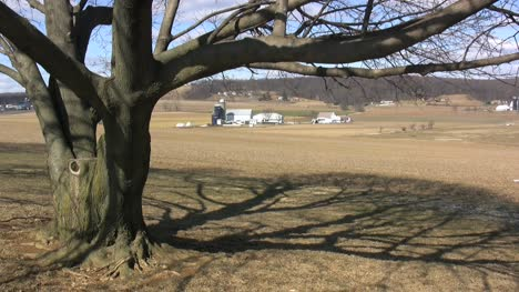 Tree-shadow-and-a-Lancaster-farmstead