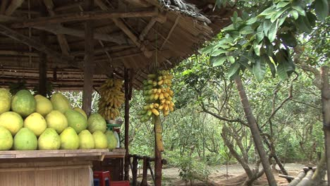 Fruit-stand-in-the-Mekong-Delta
