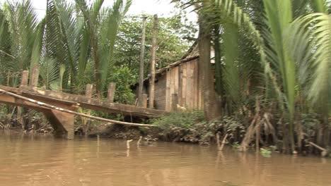 Mekong-Delta-dwelling