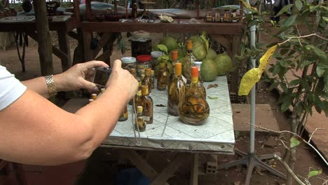 Tourist-photographing-snake-wine