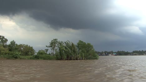 Mekong-scene-with-vegetation