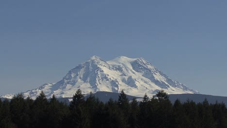 Mount-Rainier-zooms-out-to-pasture