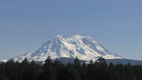 Mount-Rainier-above-forest-&-pasture