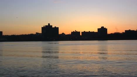 Bronx-sunrise