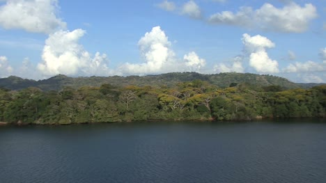 Panama-Canal-Rainforest-on-shore-of-Lake-Gatun