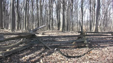 Valley-Forge-split-rail-fence