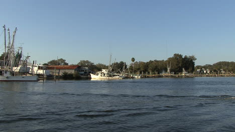 Tarpon-Springs-boat-and-bird