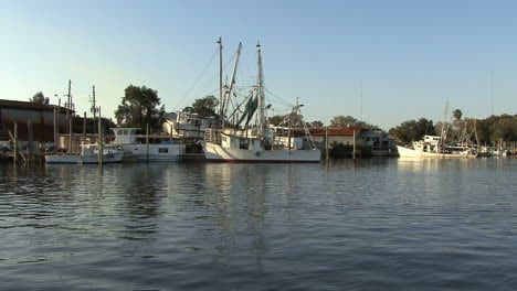 Tarpon-Springs-boats-&-bird-flies