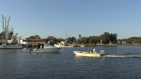 Tarpon-Springs-boats