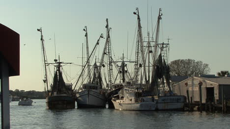Tarpon-Springs-spong-boats-backlit