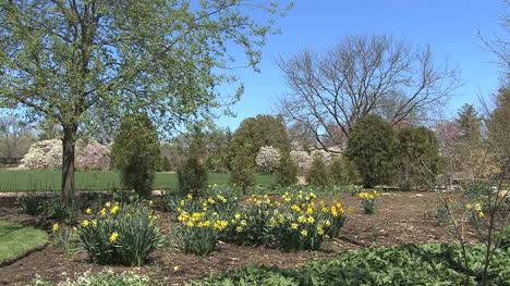Garden-in-Madison-WI