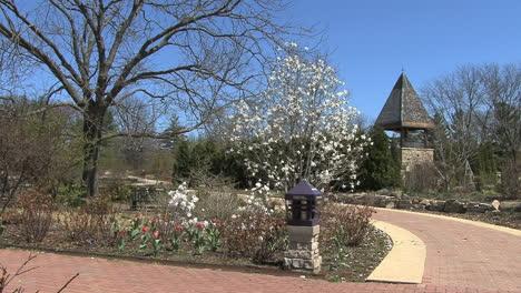 Man-walking-in-a-garden-in-Madison-WI