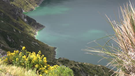 Ecuador-crater-lake-with-flowers