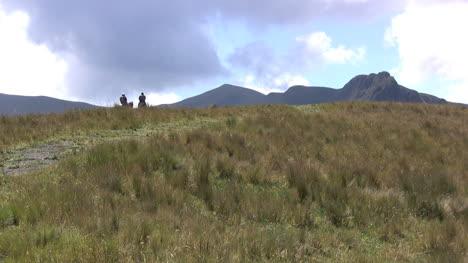Ecuador-Paramos-grass-and-horsemen
