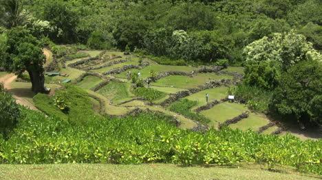 Kauai-Tourists-climb-ancient-stone-terraces