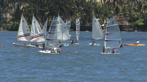Maui-Lahaina-windsurfers-sailing-2