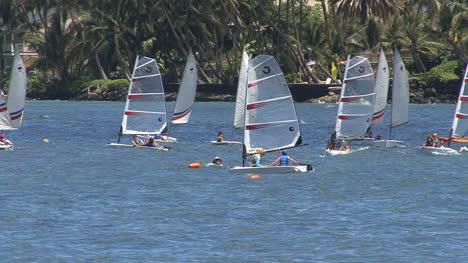 Maui-Lahaina-windsurfers-zoom-in