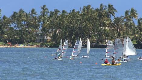 Maui-Lahaina-Zooms-in-to-windsurfers