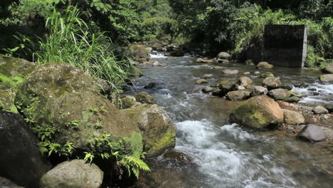 A-mountain-river-in-Dominica