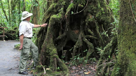 Dominica-rainforest-with-man