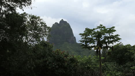 Moorea-a-jagged-mountain-peak