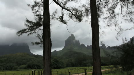 Mountain-framed-by-trees-on-Moorea
