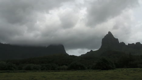 Moorea-landscape-mountain-with-bird