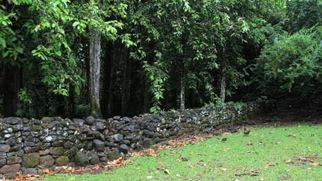 Chickens-by-a-Marae-wall-in-Moorea