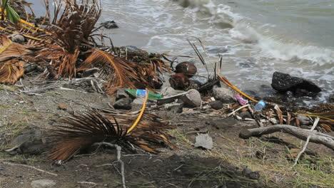 Trash-by-island-shore-3