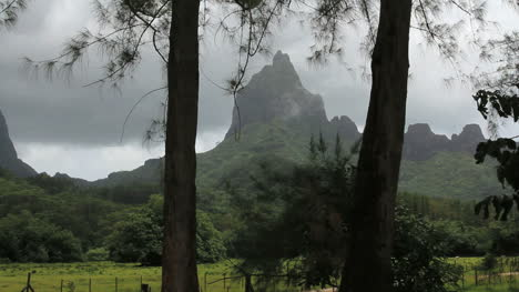 Moorea-mountain-framed-by-trees