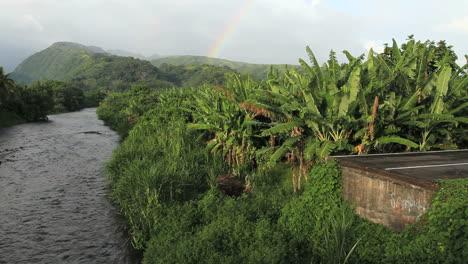 Tahiti-road-end