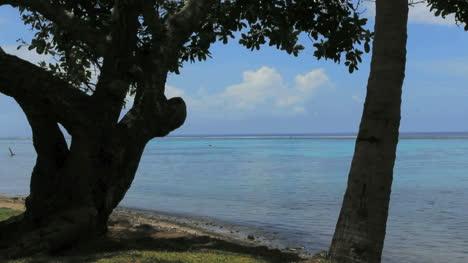 Tahiti-Park-An-Der-Meerblauen-Lagune