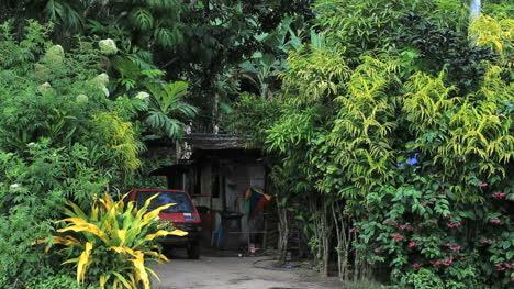 Tahiti-Nui-house-any-boy-at-well