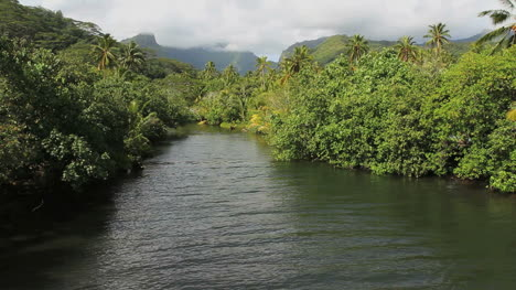 Raiatea-mountain-stream
