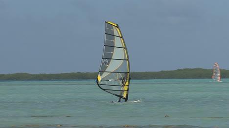 Bonaire-wind-surfer