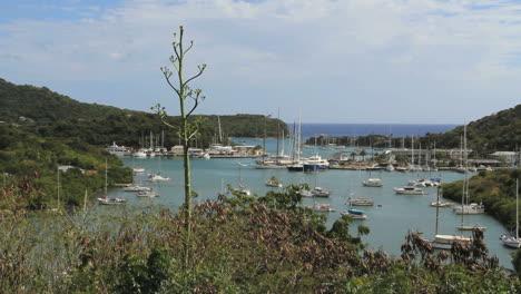 Antigua-Nelson-s-Dockyard-with-yucca