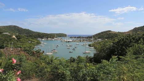 Antigua-Nelson-s-Dockyard-with-flowers