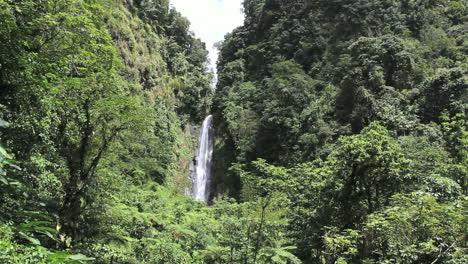 Dominica-Trafalgar-Falls-1