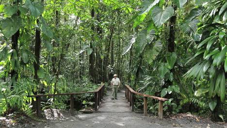 Dominica-rainforest-man-on-bridge