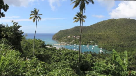 St-Lucia-Marigot-Bay-and-palms