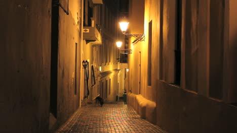 San-Juan-night-alley
