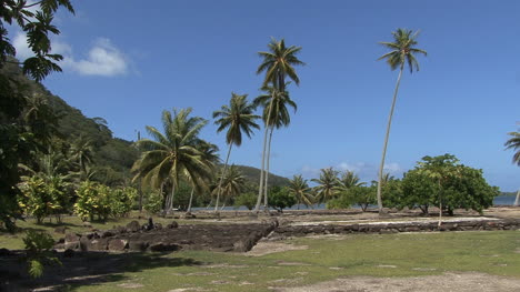 Huahine-stone-platforms-and-palms
