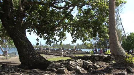 Huahine-sacred-site-1