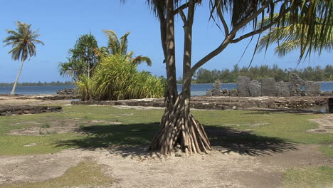 Huahine-sacred-stones-framed-by-tree
