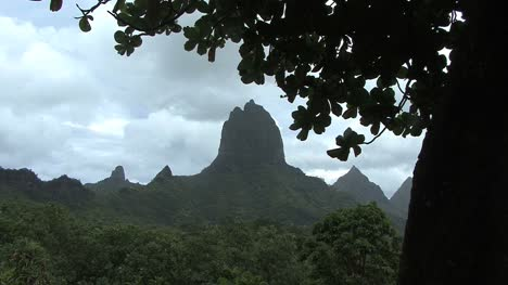 Moorea-Mount-Rotui-Con-Hojas