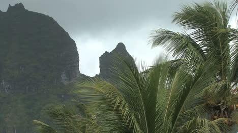 Raiatea-palms-and-peaks