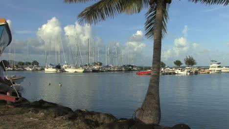 Raiatea-sailboat-harbor