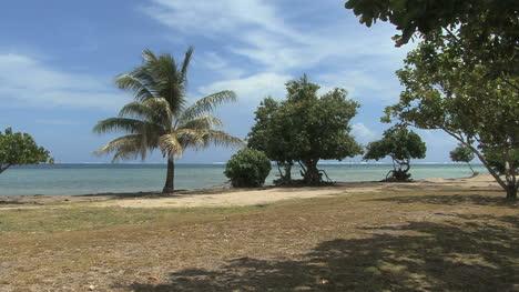 Raiatea-coast-at-marae
