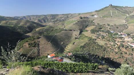 Port-wine-vineyards